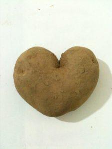 """""""Dragostea trece prin stomac"""" – Cartofăn Tuberculus"""